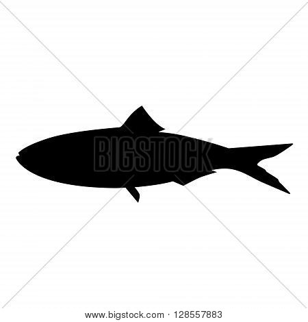 Vector illustration black silhouette of sardine fish isolated on white background. Fish icon
