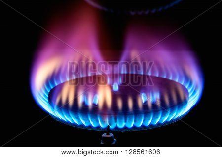 Kitchen Gas Burner Flame