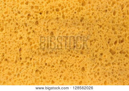 New And Clean Yellow Sponge Textured Background