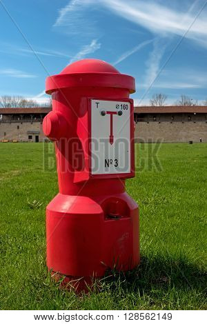 A red fire hydrant on the green grass against the blue sky.