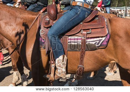 Tha horse with rodeo equipment for cowboys and cowgirls - leather saddle