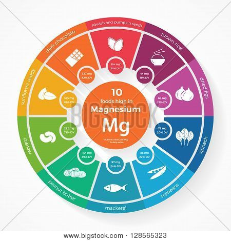 10 foods high in Magnesium. Nutrition infographics. Healthy lifestyle and diet vector illustration with food icons.