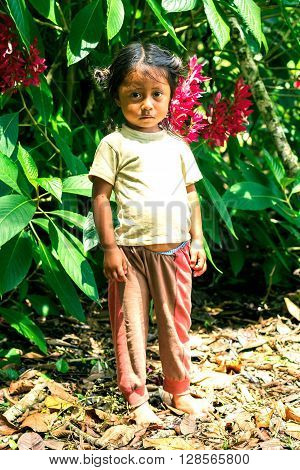 Yasuni Ecuador - 17 November, 2012: Young Indigenous Girl Looking Scared Straight To The Camera South America In Yasuni On November 17 2012