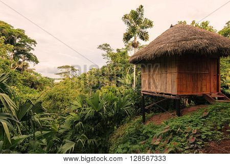 Lodge made by bamboo In National Park Yasuni South America