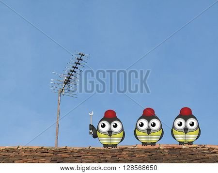 Comical bird workmen repairing a television aerial on a rooftop against a clear blue sky