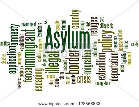 Asylum, Word Cloud Concept 6