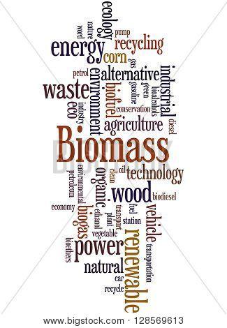 Biomass, Word Cloud Concept