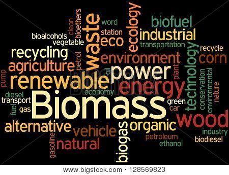 Biomass, Word Cloud Concept 5