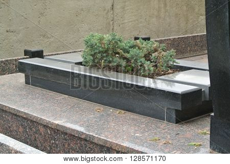 Flowerbed with the juniper near the obelisk made of black marble and granite.