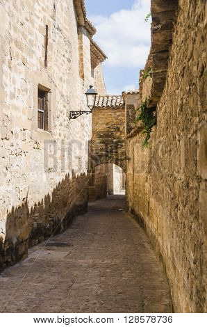 Ancient Alley With Arc In Baeza Jaen