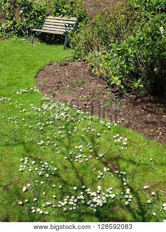 Bench Within Garden Landscape Photographed In Budlake In Devon