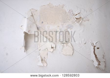 I had to peeling paint my house wall by my self because moisture from the side walls the color blister I had to strip off the old paint. To paint again