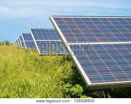 Photovoltaic panels installed in a green meadow.