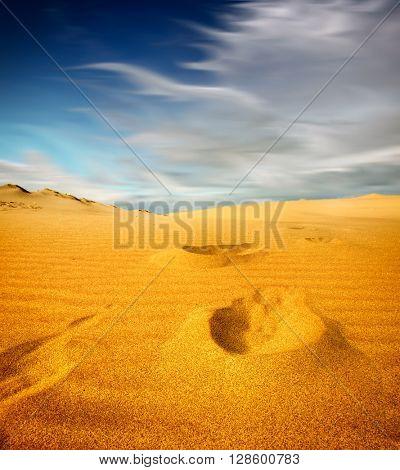 Footprints on sand dune, Sahara Desert,