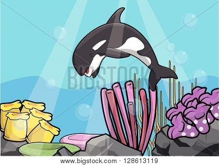 Orca underwater scenery illustration .eps10 editable vector illustration design