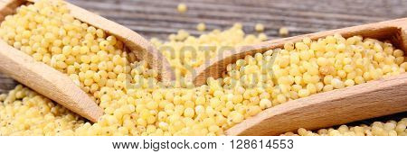Heap of yellow millet groats with wooden spoon lying on wooden background concept for healthy eating and nutrition