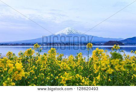 Mount fuji at Lake kawaguchiko in the morning.
