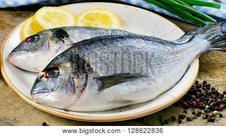 Fresh Dorado Or Sea Bream On Plate