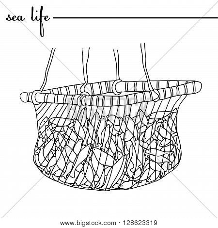 Sea life. The fish in the net. Original doodle hand drawn illustration. Outlines