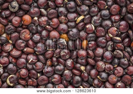 background and texture of gluten free black quinoa grain, grown in Bolivia - life size macro