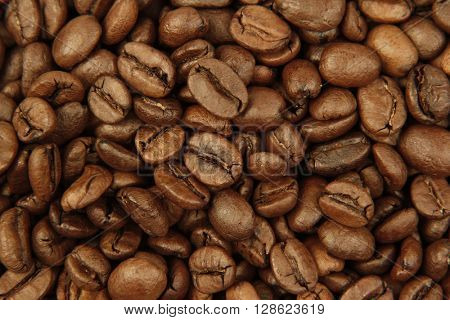 Closeup of roasted coffee beans