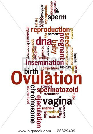 Ovulation, Word Cloud Concept 9