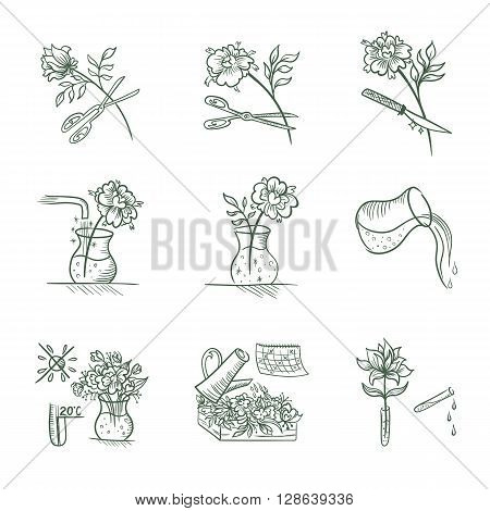 floral design signs in sketch style isolated on white background