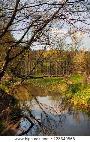 Warta river, Poland, Europe
