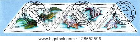 STAVROPOL RUSSIA - May 04 2016: a stamp printed by Guinea shows Crocodiles series Crocodiles Earth circa 2011
