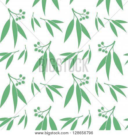 Seamless pattern. Eucalyptus. Isolated leaves on white background. (EPS)
