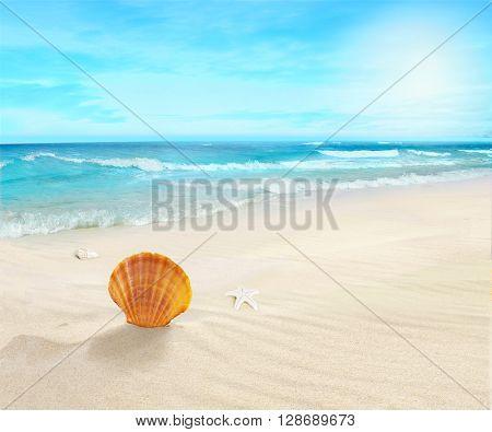 Landscape on sunny beach.
