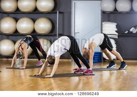 Friends Performing Downward Dog Pose In Gym