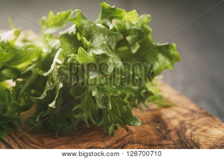 fresh green frillis salad on cutting board, toned photo