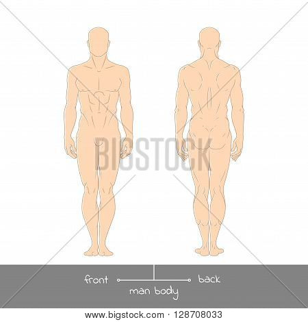 Male Muscular Body Shapes Colored Outline Vector Illustration