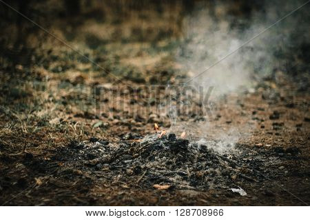 Simple Fire Place With Smoke In Beautiful Autumn Forest