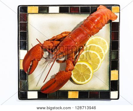 Whole cooked lobster served on a plate with lemon slices isolated on white.