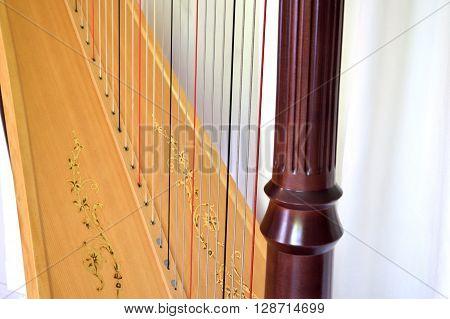 Pedal Harp Detail