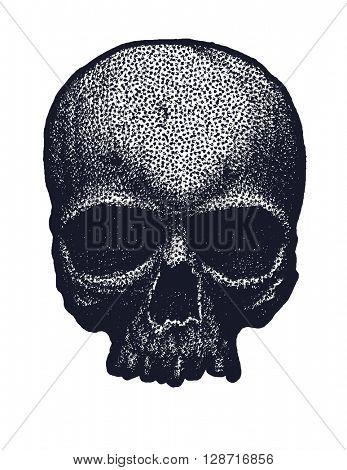 Black and white human skull. Hand drawn. Vector illustration.