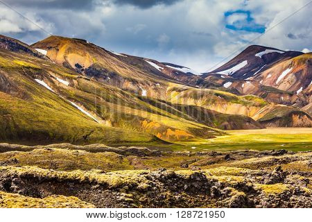 Multi-color rhyolitic mountains are lit with the July sun. National park Landmannalaugar. Travel to Iceland in the summer