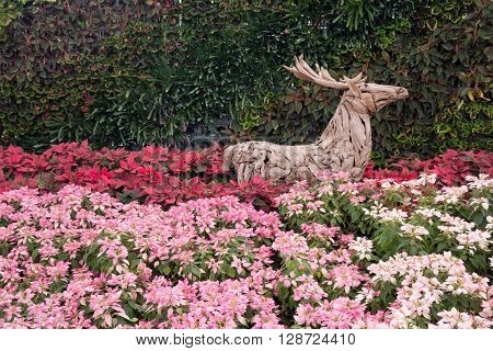 outdoor colorful gardening with a wooden dear