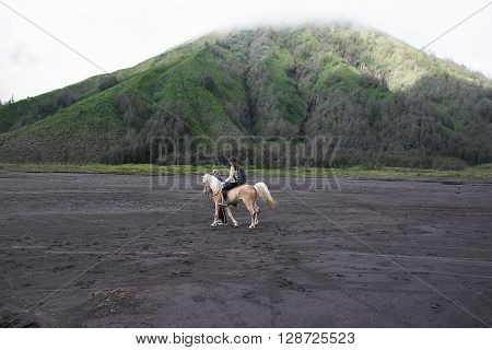 Java, Indonesia - April 3, 2016: Many tourists Travel to Mount Bromo, Mount Bromo is an active volcano and part of the Tengger massif, in East Java, Indonesia. At 2,329 metres.