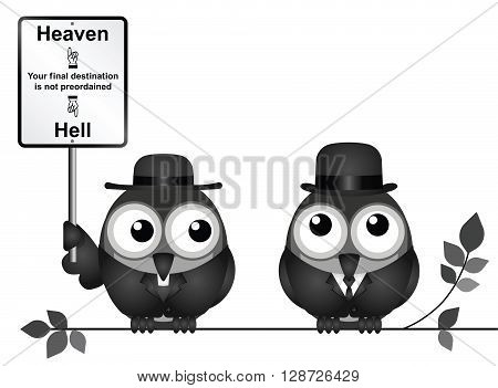 Bird vicar with destination heaven or hell sign and worried businessman perched on a branch isolated on white background