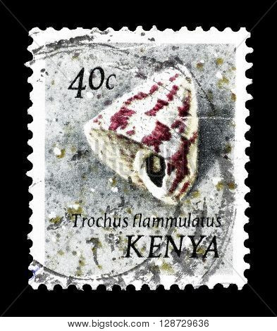 KENYA - CIRCA 1971 : Cancelled postage stamp printed by Kenya, that shows sea creature.