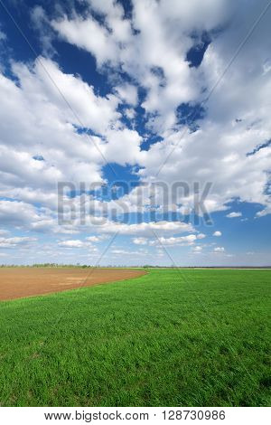 Clouds over the field, bright rich countryside Photo