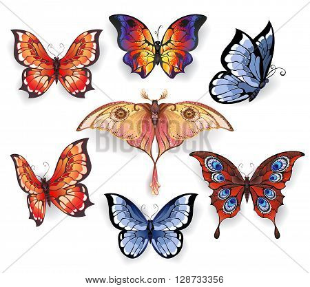 set of isolated bright realistic exotic butterflies on a white background. Exotic butterflies.