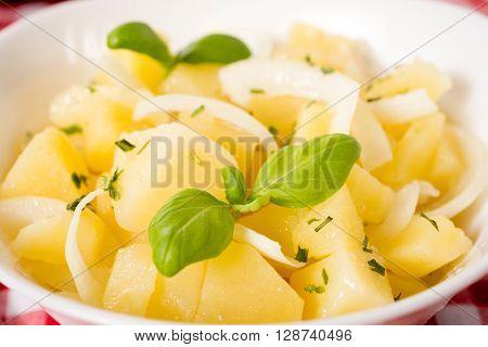 German Traditional Potato Salad