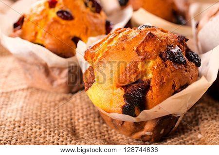 Sponge Cakes With Cranberry