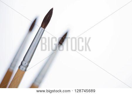 Three Brushes White Background