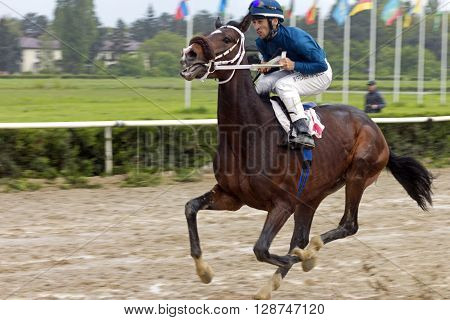 NALCHIK,RUSSIA - MAY 01,2016:Jockey Myrzabek Kappushev crosses the finish line in Nalchik,Caucasus,Russia on May 01,2016.