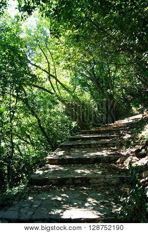 Stairs in a shady grove of the monastery Savina (Herceg Novi, Montenegro)